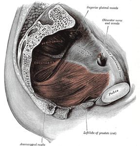 Tener prostatitis aun siendo joven, es un motivo relativamente frecuente.