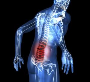La erección en el discapacitado medular se puede tratar con fármacos facilitadores.