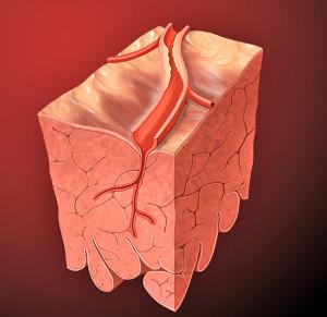 Una dieta que proteja al corazón evitará la disfunción eréctil.