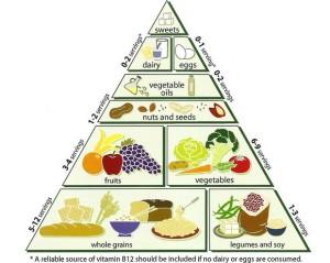 Una adecuada alimentación debe tener un mínimo de  tres comidas al día y máximo cinco.