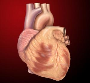 Con los años aumentan las posibilidades de padecer una enfermedad cardíaca.
